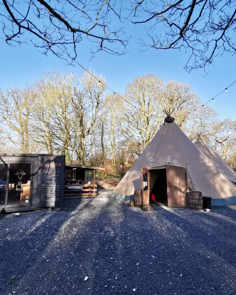 Fodder farm shop and cafe container and two tipis for customers to sit in sits amongst the trees at Finnebrogue Woods
