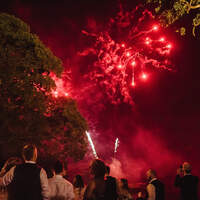 Wedding guests stand in Finnebrogue Woods watching red fireworks exploding in the sky
